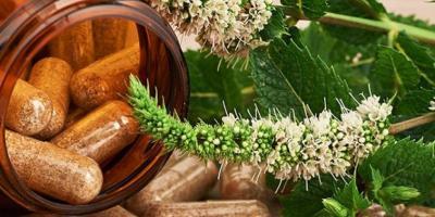 Cápsulas de hierbas medicinales